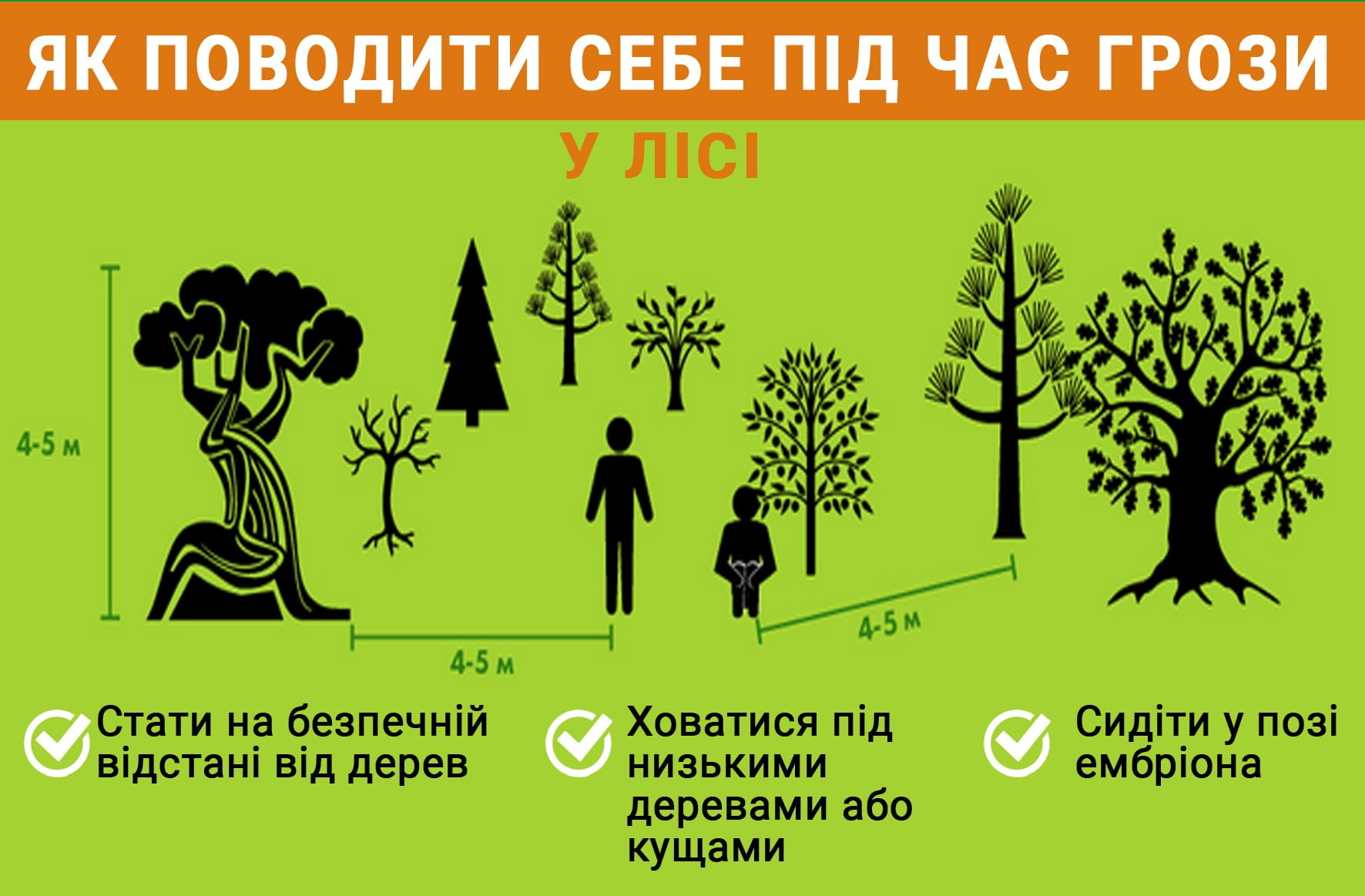 Як поводити себе під час грози у лісі