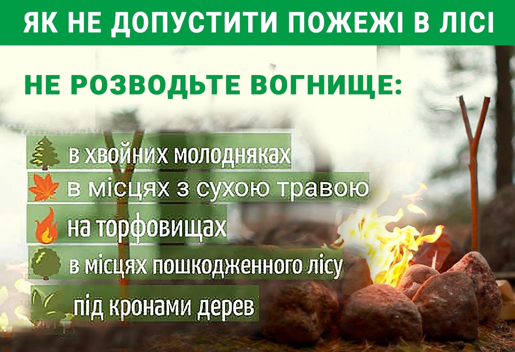 Де не можна розводити вогнище в лісі